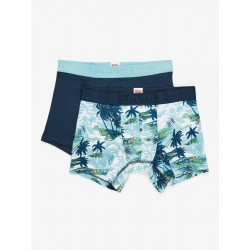 Levis 200sf the aloha print boxer brief 2p