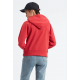 Levis graphic sport hoodie hsmk outline
