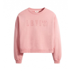 levis graphic diana crew serif outline garment dye blush